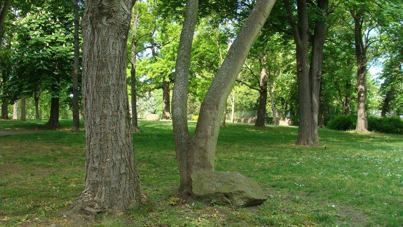Heinrich Heine Park in Halle